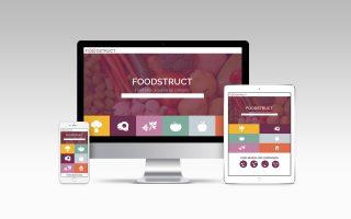 Հայկական FoodStruct ստարտափը 400.000 ԱՄՆ դոլար ներդրում է ստացել