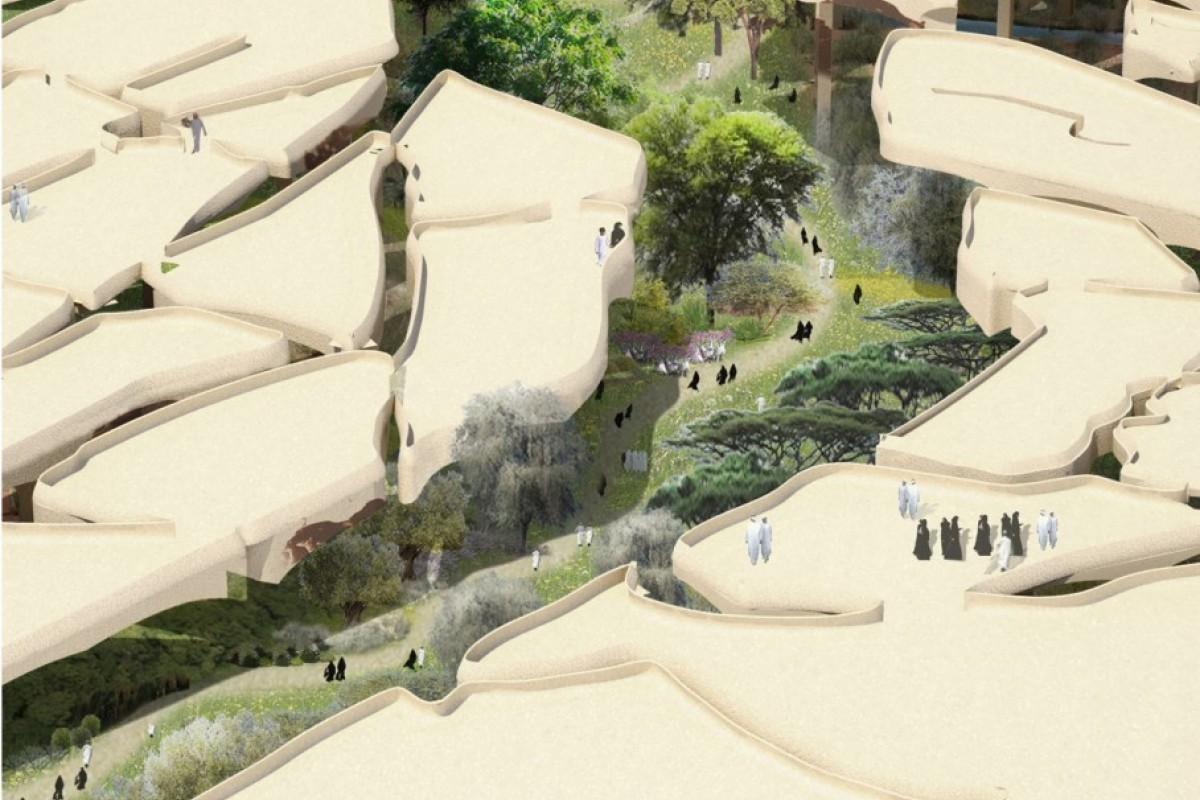 Al Fayah Park. Մասնատված հողատարածքի տեսքով զբոսայգի Աբու Դաբիում